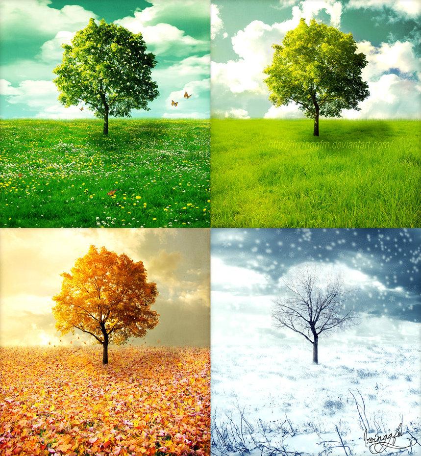 valeriana cambio di stagione